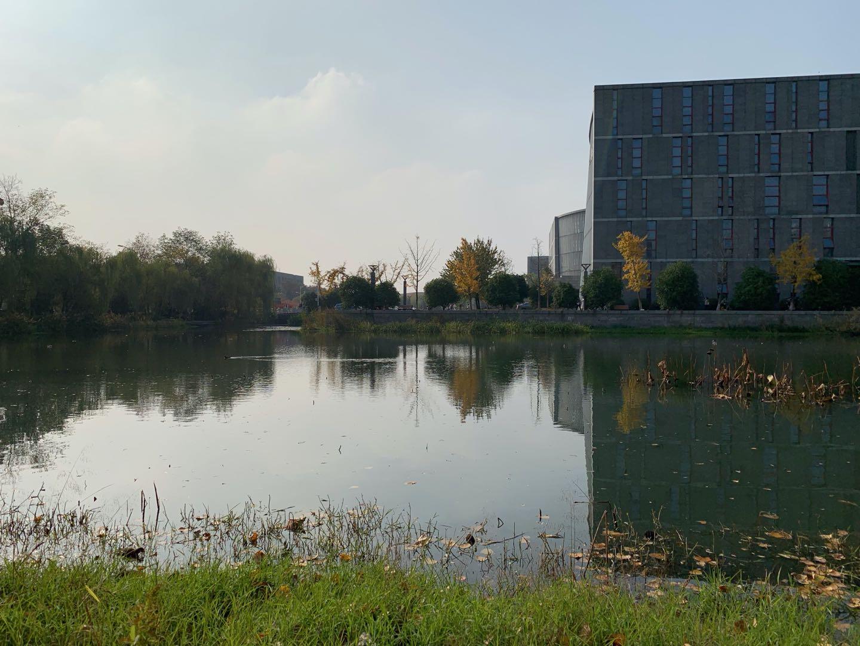 Herbst in Nanjing III